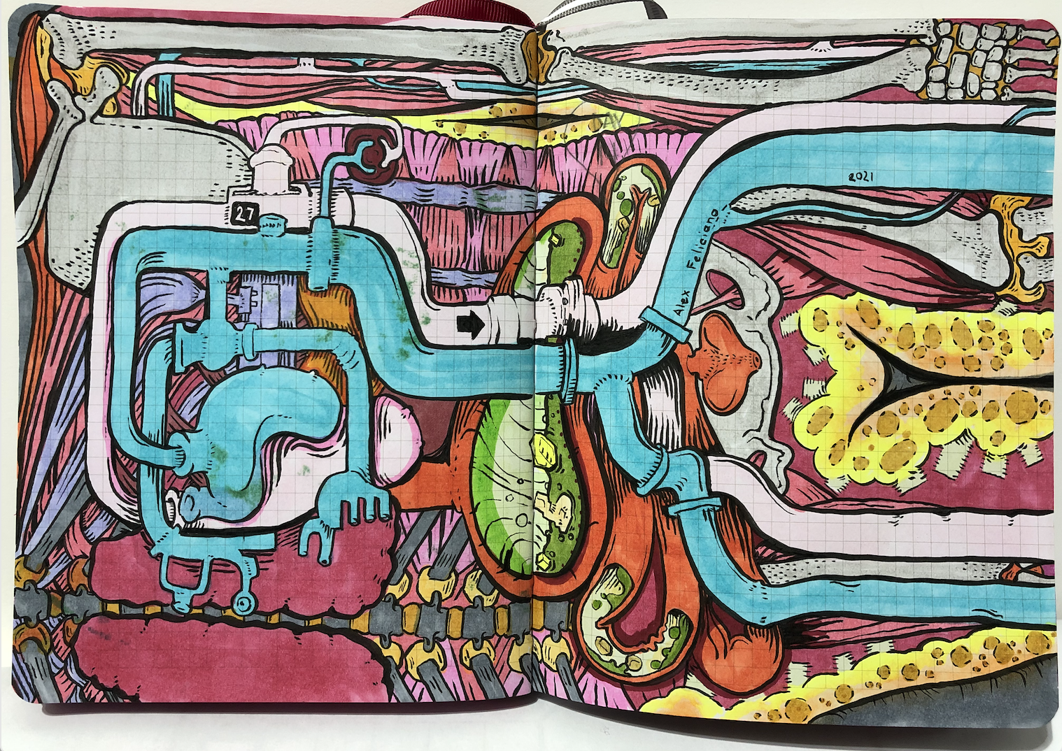 Illustration of the internal human body, Digestive System